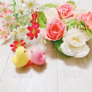 ひよこと花の写真・画像素材[994072]