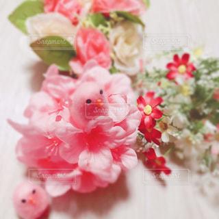 ピンクの鳥と花の写真・画像素材[994078]