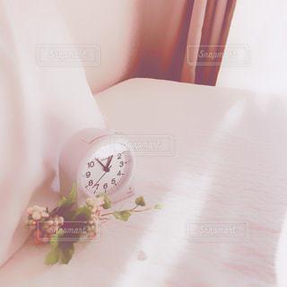目覚めの写真・画像素材[994722]