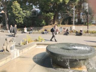 公園内の噴水の写真・画像素材[1001059]