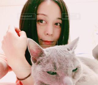 ネコとくつろぐの写真・画像素材[1124813]