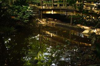木製の橋と水面の反射の写真・画像素材[802814]