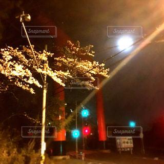 夜青信号の写真・画像素材[784175]