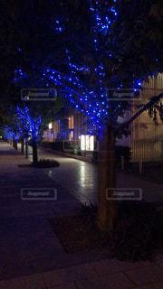 夜のライトアップされた街の写真・画像素材[779990]