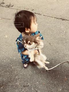 犬を保持している小さな男の子の写真・画像素材[779898]
