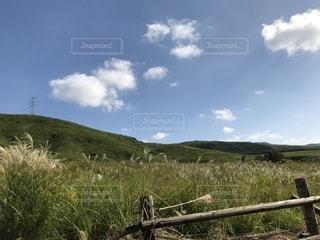 緑豊かな緑のフィールドに立っている人の写真・画像素材[825658]