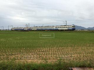 田んぼの中を走る電車の写真・画像素材[861384]