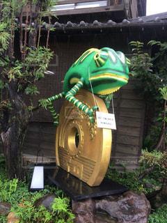 カエルと五円玉の写真・画像素材[778788]