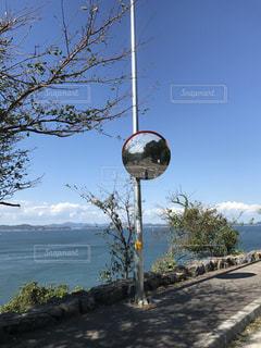木の側面にある記号を持つポールの写真・画像素材[778366]