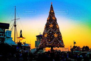 クリスマスツリーの写真・画像素材[867021]
