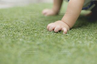 芝生に座っている小さな男の子の写真・画像素材[908515]