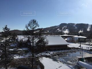 雪に覆われた山の写真・画像素材[976584]