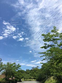 空の写真・画像素材[830717]