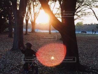 秋の夕暮れ - No.780087