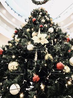 クリスマス ツリー - No.923146