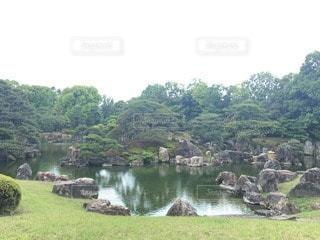 自然の写真・画像素材[23871]