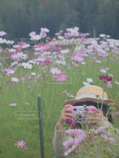 カメラ女子の写真・画像素材[781958]