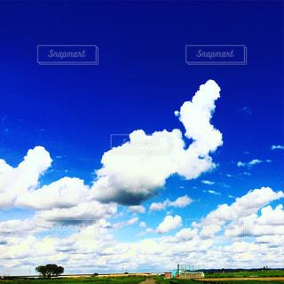 青い空と夏の雲の写真・画像素材[807120]