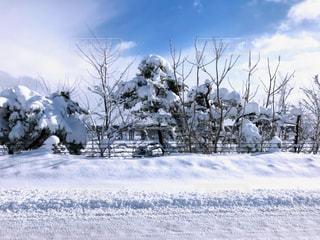 田舎の雪景色の写真・画像素材[1090453]