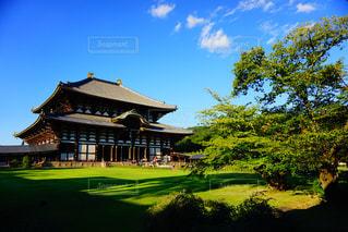 世界の東大寺の写真・画像素材[780767]