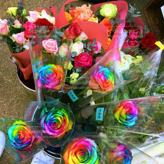 色とりどりの花のグループの写真・画像素材[781276]