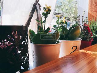 木製のテーブルの上に花の花瓶 - No.823031
