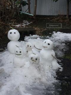 庭で作った雪だるま達の写真・画像素材[781679]