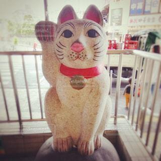 招き猫の像の写真・画像素材[2127146]