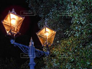 綺麗な街灯の写真・画像素材[885930]