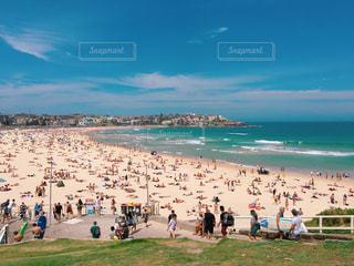 クリスマスのビーチ②の写真・画像素材[782809]