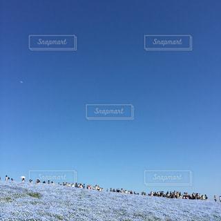 空も大地も青の写真・画像素材[782815]