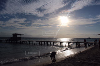 水の体に沈む夕日の写真・画像素材[783278]