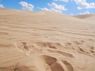 砂浜のビーチの写真・画像素材[1503506]