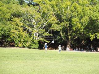 緑豊かな緑のフィールドに立つ人々 のグループの写真・画像素材[783295]