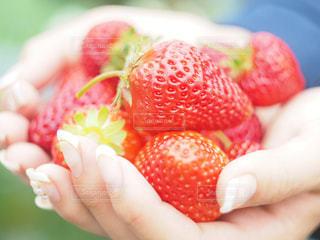 近くに果物を持っている手のアップ - No.783303