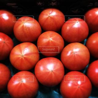 フルーツトマトの写真・画像素材[1107816]