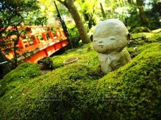 京都の写真・画像素材[23211]