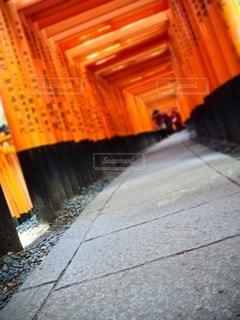 京都 - No.24184