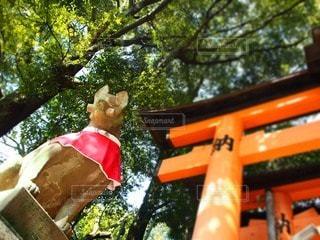 京都の写真・画像素材[24192]
