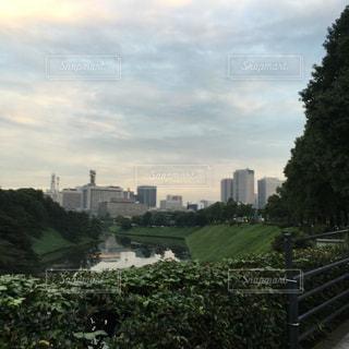 皇居ランの写真・画像素材[841347]