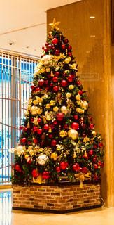 クリスマスツリーの写真・画像素材[913131]