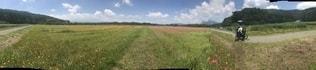 草原の写真・画像素材[1529573]