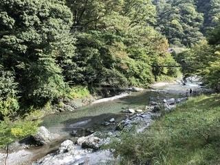 河原の写真・画像素材[1530435]