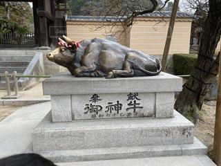 牛の像の写真・画像素材[2943528]