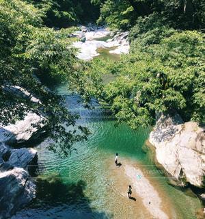 川の中腹の写真・画像素材[784281]