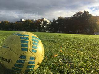 フィールドに黄色のボールの写真・画像素材[792075]