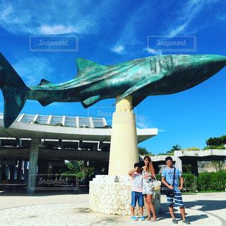 美ら海水族館の写真・画像素材[1077383]