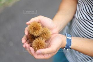 果物を持っている手の写真・画像素材[850856]