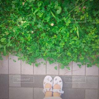 庭に座っている人の写真・画像素材[785116]