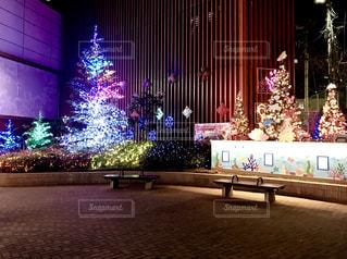 クリスマスイルミネーションの写真・画像素材[905526]